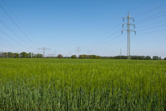 Netzausbau ist eine der dringendsten Herausforderungen für die Politik
