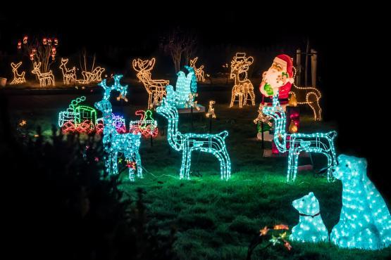 Stromverbrauch von Weihnachtsbeleuchtung im Vorgarten