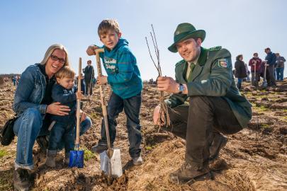 3. Baumpflanzaktion der WEMAG startet am 19. Oktober 2013