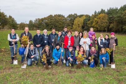 WEMAG Mitarbeiter bei der 3. Baumpflanzaktion