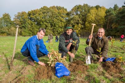 Caspar Baumgart, Peter Rabe und Manfred Baum bei der Baumpflanzaktion 2013