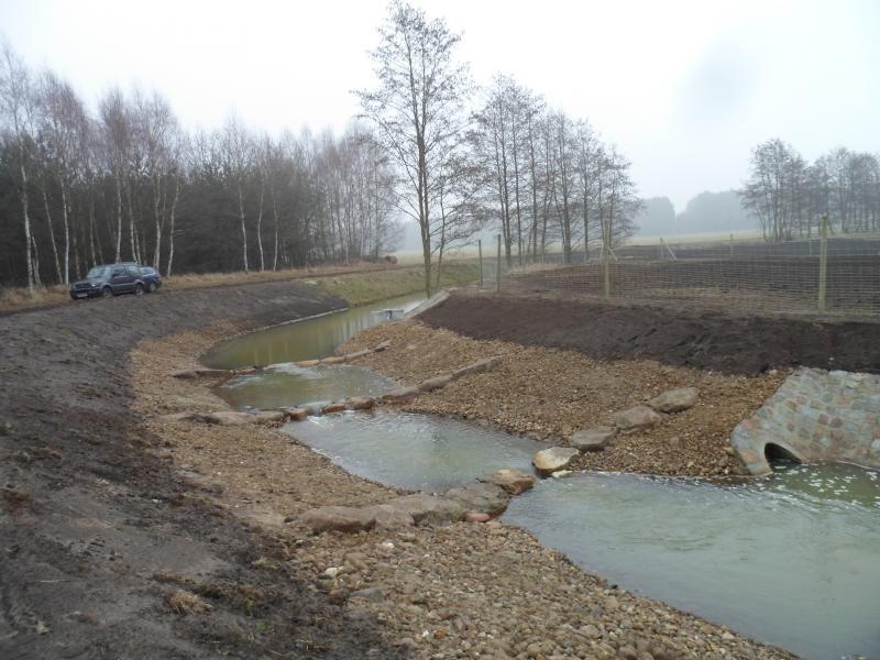 WEMAG unterstützt die Renaturierung des Hechtforthgrabens