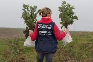 In Malchow entsteht der fünfte WEMAG-Klimawald