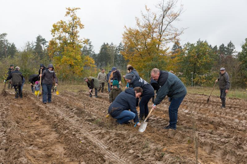 Kunden und Mitarbeiter pflanzen gemeinsam Bäume