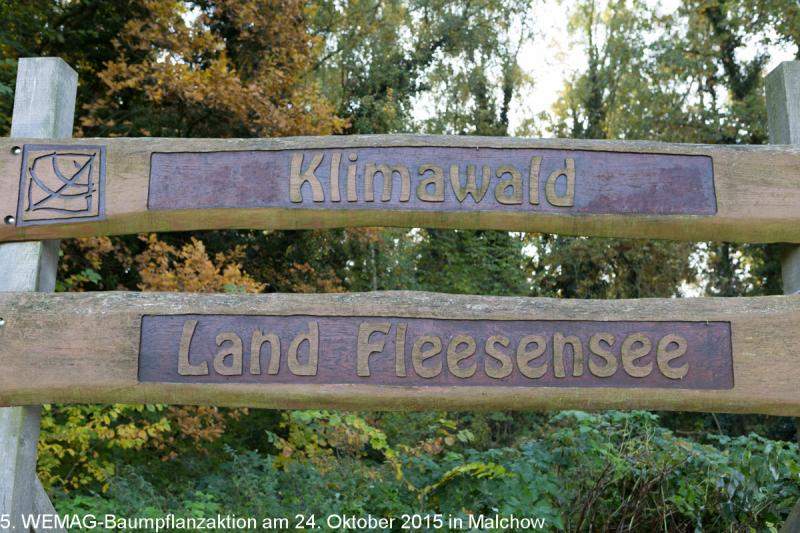 WEMAG Klimawald Land Fleesesee