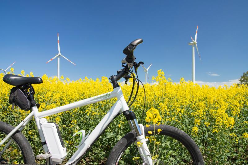 Tag der erneuerbaren Energien in Mecklenburg-Vorpommern