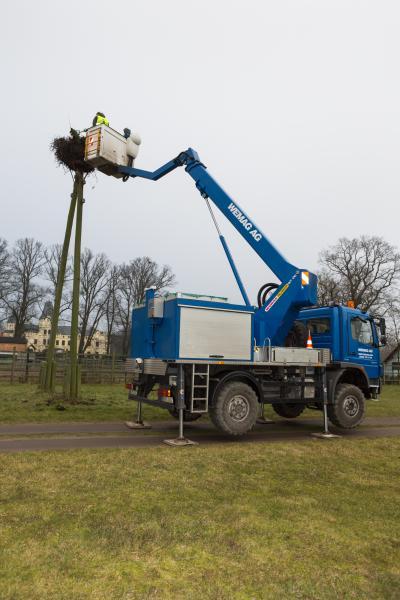 Storchennester wurden mit Hilfe der WEMAG gesäubert