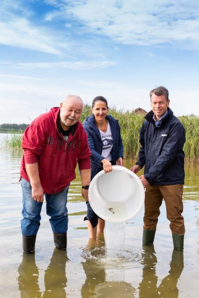 Gemeinsam setzen die Beteiligten die Aale in den Goldberger See ein