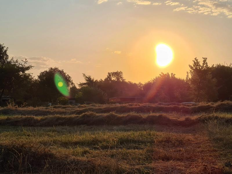 Heuballen im Sonnenuntergang - trockene Landschaft