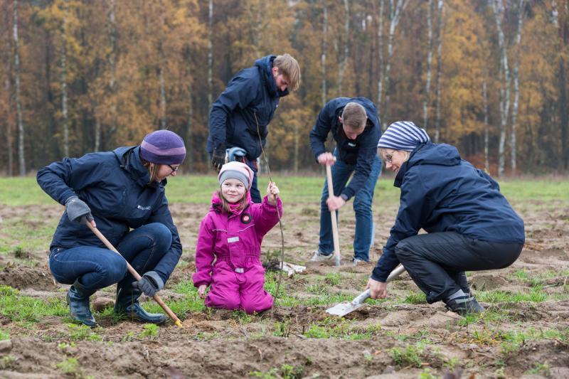 Etwa 130 Pflanzfreunde beteiligten sich an der WEMAG-Baumpflanzaktion.
