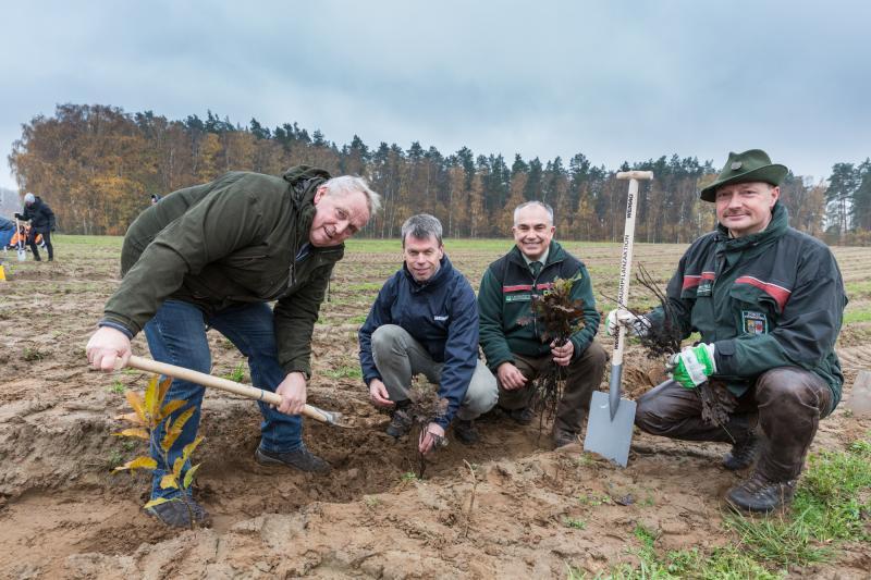 Landwirtschaftsminister Dr. Till Backhaus, WEMAG-Vorstand Caspar Baumgart, Manfred Baum, Vorstand der Landesforst Mecklenburg-Vorpommern und Forstamtsleiter Bernd Poeppel (v.l.) engagieren sich bei der 9. WEMAG-Baumpflanzaktion gemeinsam für den Klimaschu