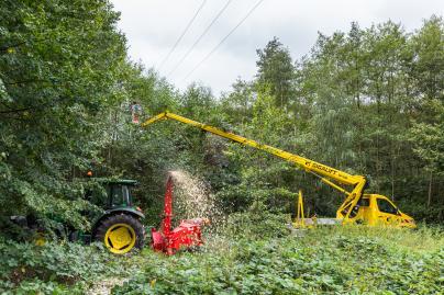 Ausholzungsarbeiten der WEMAG