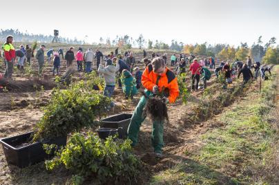 Viele Kunden, Partner und Mitarbeiter packten bei der Baumpflanzaktion mit an