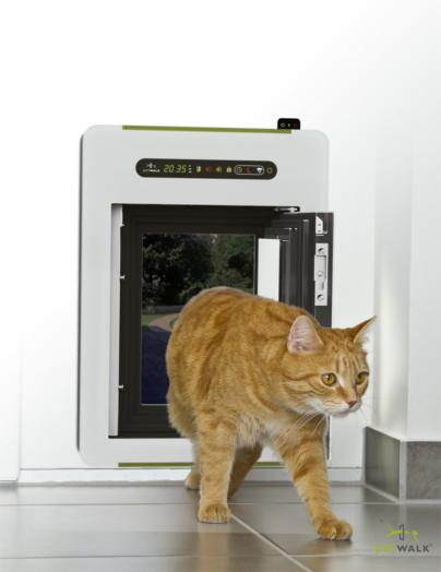 Petwalk - die sichere Katzenklappe